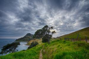De beste reistijd voor een vakantie naar Nieuw-Zeeland
