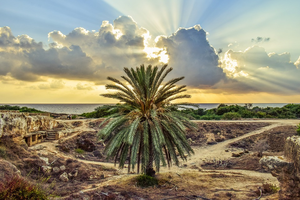 Paphos Cyprus: alles wat je moet weten